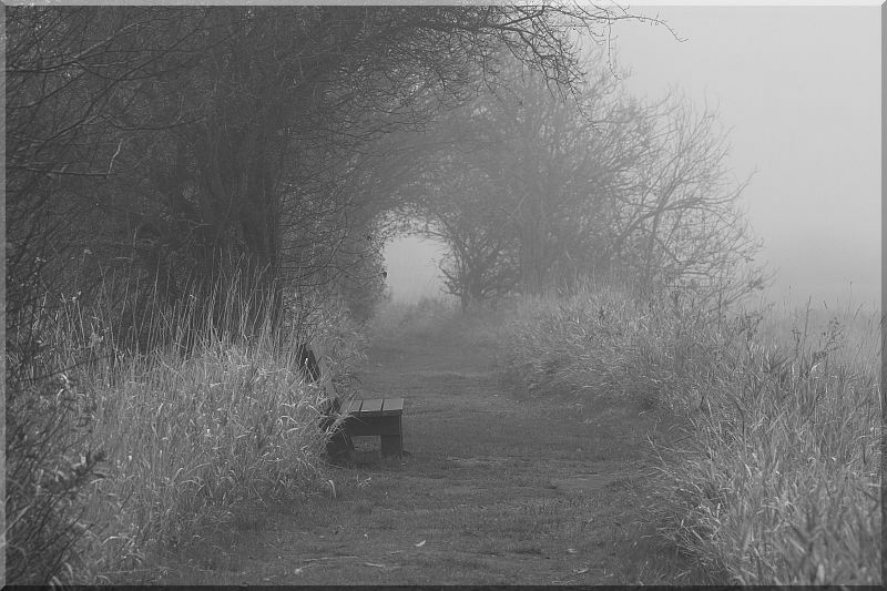 Mist at the End of the Tunnel